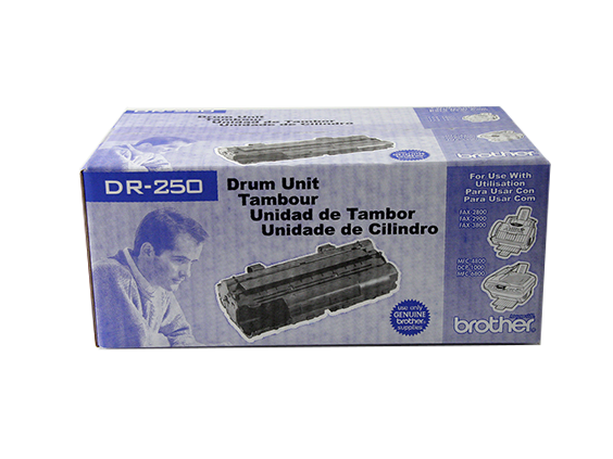 DR-250_box