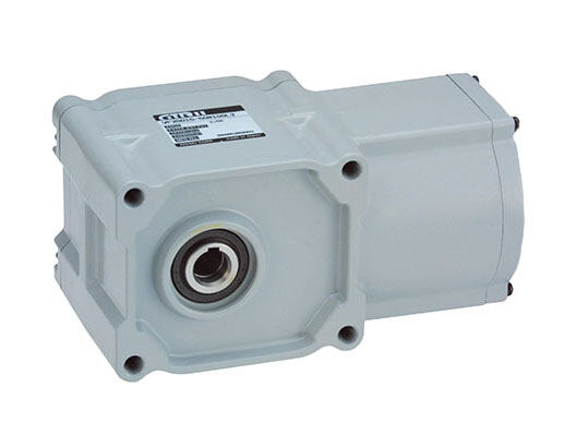 Light grey brushless DC Gearmotor