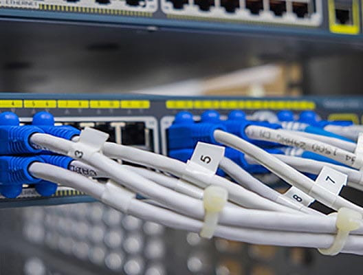 White cables with blue connectors connected to ports