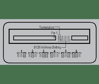 SCSI Jumpers label