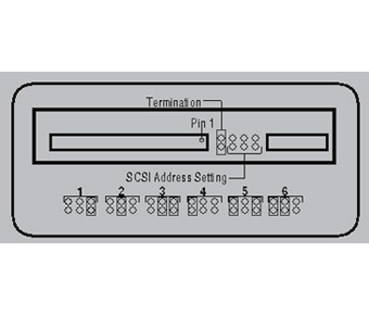 SCSI Jumpers label