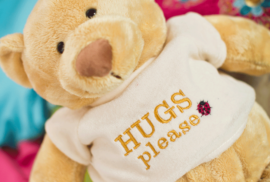 "Teddy bear with ""Hugs Please"" embroidered shirt"