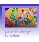 Color Shuffling<sup>&trade;</sup> Function