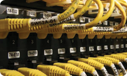 Patch Panel Labeling Solutions