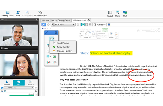 Pointing and Annotation Tools