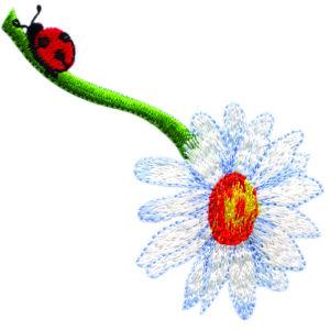 Ladybug on Daisy Stem