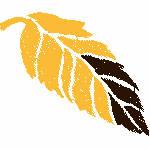 Orange & Brown Leaf