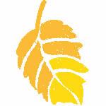 Orange & Gold Leaf