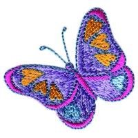 Heart Butterfly 2