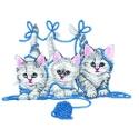 Tangled Kittens