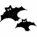 Swooping Bats