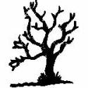 Creaky Dead Tree