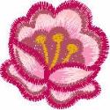 Dusty Rose in Bloom