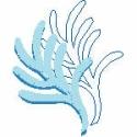 Pale Blue Coral